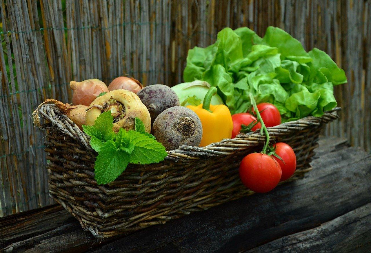 Как экономить на питании без ущерба его качеству